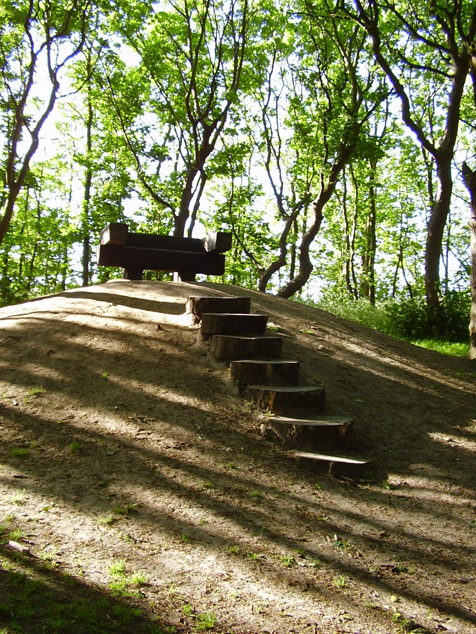 Ervaar zeven stappen naar geluk bij Kundalini Tree in Haarlem